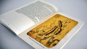 Ünlü Seyyahların Aliağa ve Çevresini Anlatan Notları Bu Kitapta